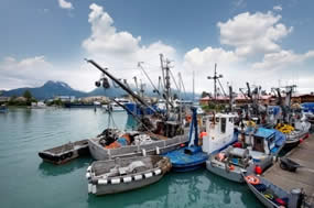 commercial fishing jobs alaska seafood employment
